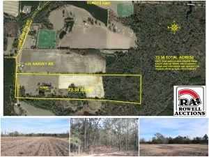 73 Acres in Berrien County, GA