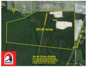241.8 Acres | Excellent Timber & Cropland