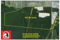 241.8± Acres off of GA HWY 135 LAkeland, GA