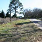 4.6 ± Acre Land Tract -:- 1300 Beckwith Road Ellaville, GA