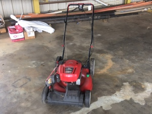 "Troy Bilt 21"" Push Mower with Briggs Engine"