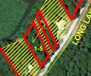 2 Lots with Lake Frontage on Long Lake Dr., Lots 15, (1/2) of 16, Trasure Lake Subdivision