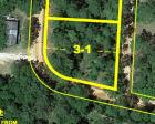 0.62± Wooded Home Site on Bartow Saunders Circle