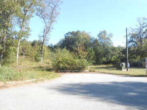 Great Multi-Family & Commercial Lots 4.67± Acres, Hanover Street Jackson, GA - Now Selling At Absolute Auction