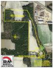 60 ± Acres Crop & Merchantable Timberland, 1088 Nead Cauley Road, Coffee County, GA